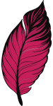 Hot pink and black illustration of a feather quill